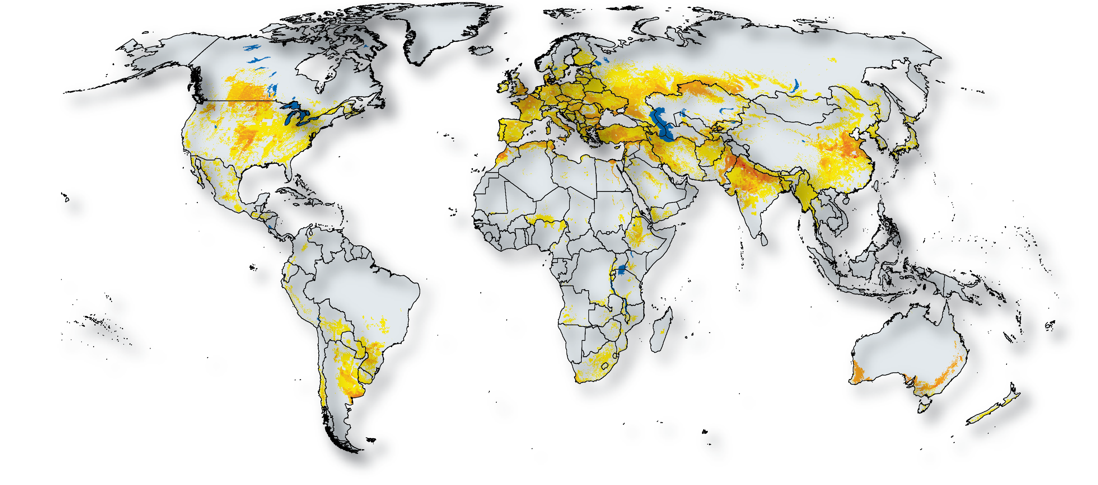 Wheat in the world cgiar research program on wheat global wheat area classified no legend map gumiabroncs Images
