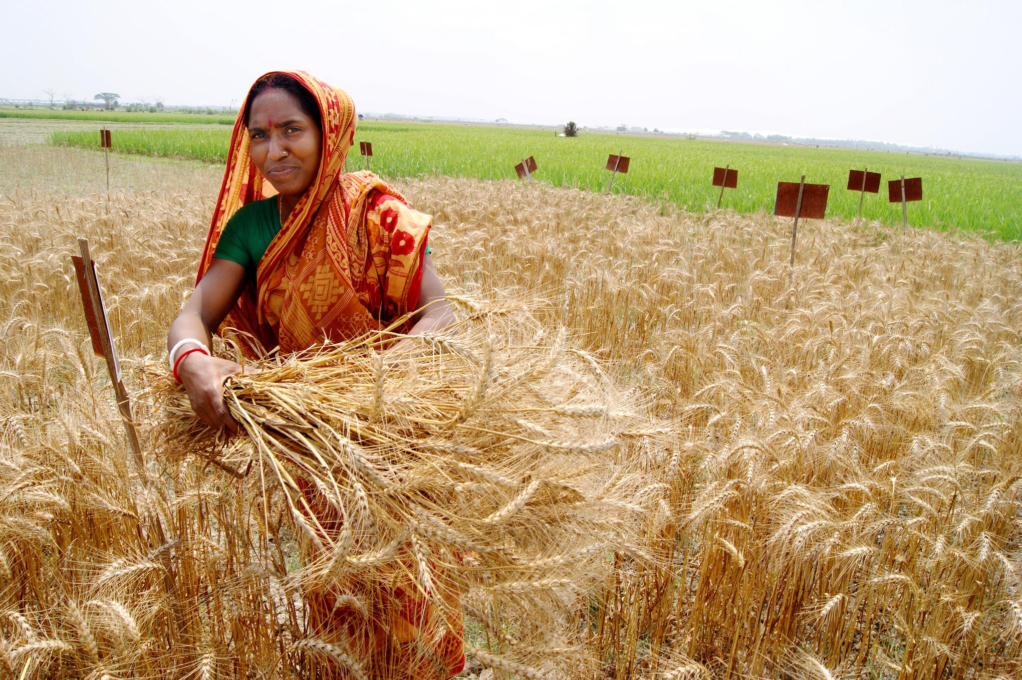 Фото сельские женщины 5 фотография