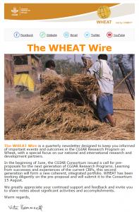 wheatwire2.2